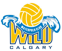 Image: Wild Water Polo
